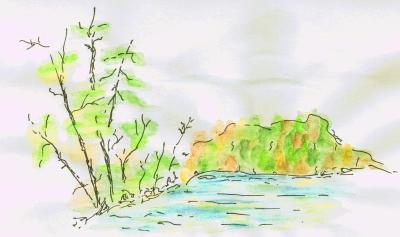 Landscape 9-10-09